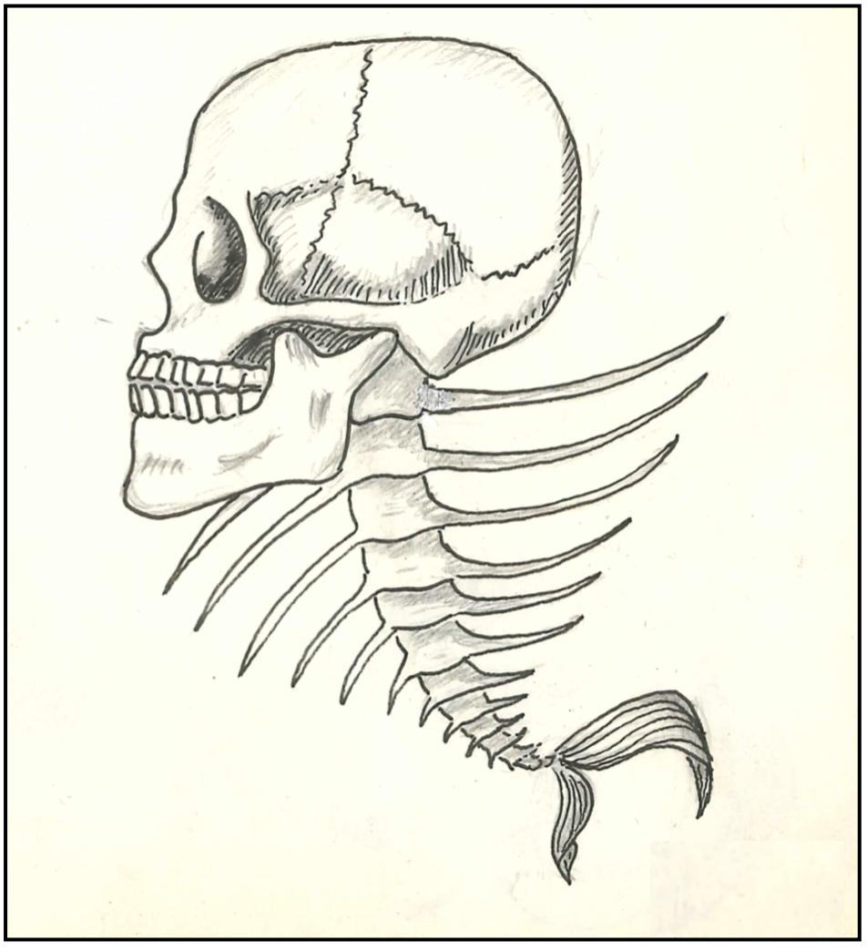 Homo Ictius